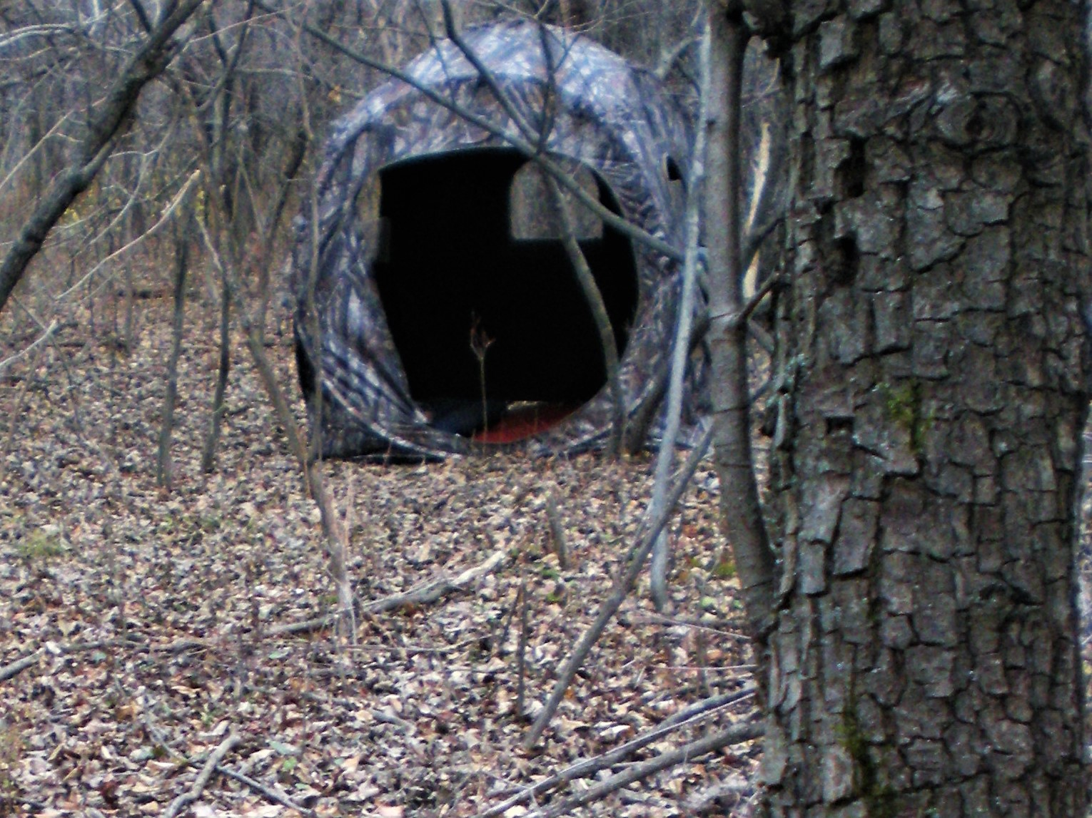 A ground blind is one safe way to help introduce kids to the elements of the hunting woods.  Forrest Fisher Photo