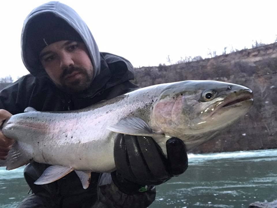 Ricardo Davila with nice steelhead caught while fishing from shore in the Lower River.
