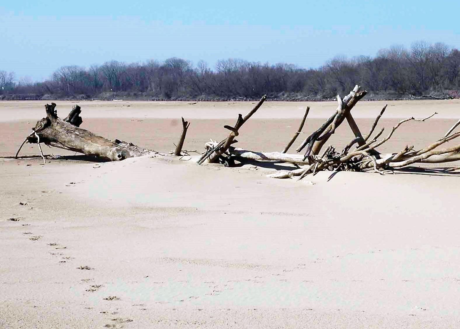 Sandbar Hunting – Discovery, Ancestors, Archaeology   Share