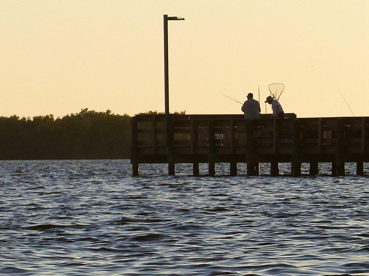Fishing Southwest Florida With Fishin 39 Frank Share The