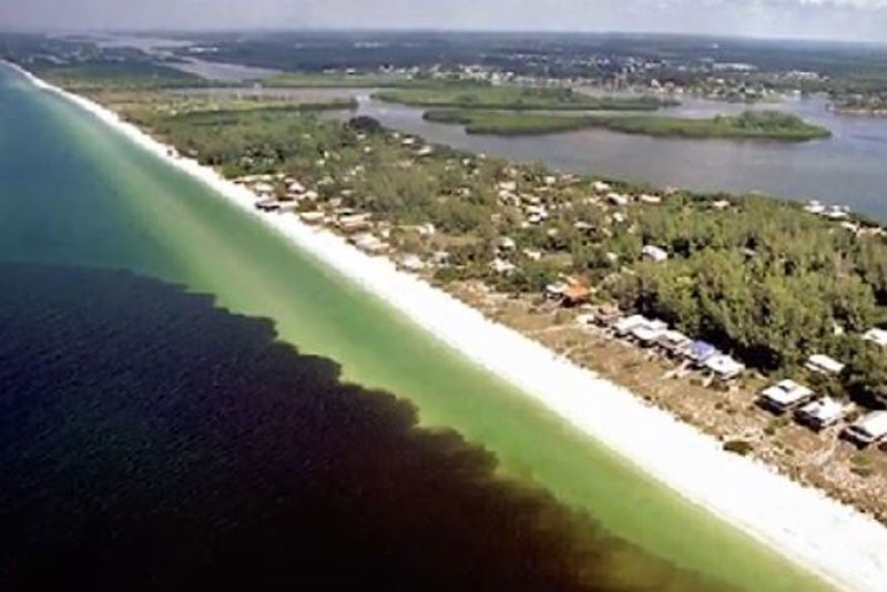 Red Tide Outbreak in Southwest Florida