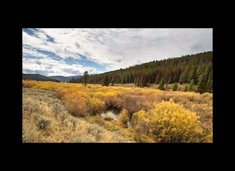 Wildlife Habitat, History, Permanently Protected in Montana