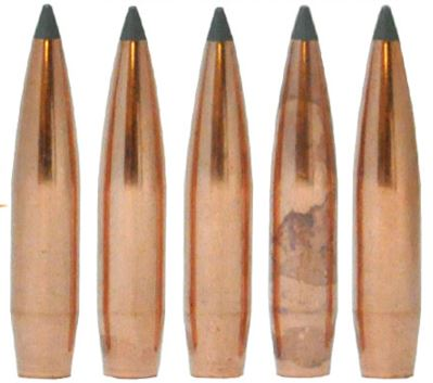 Nosler Bullets for Plinking