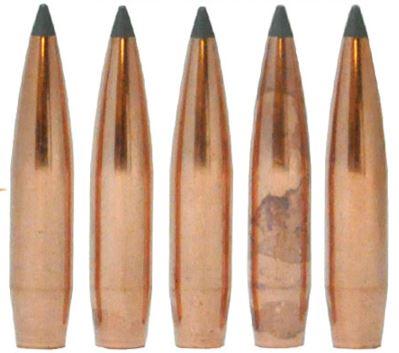 Nosler Bullets for Plinking | Share the Outdoors