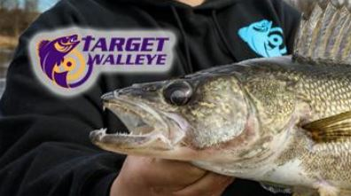 Summer Walleye Fishing Tips, VISIT TARGET WALLEYE.  Click Picture below.