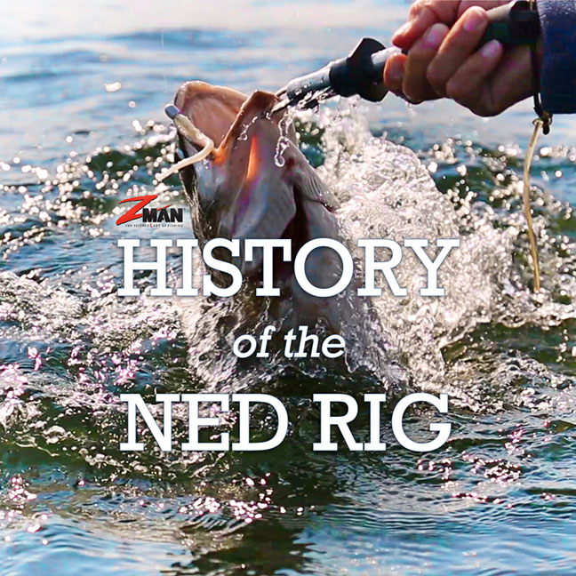 The NED Rig: One of the Most Effective Fishing Baits Ever...here is the story