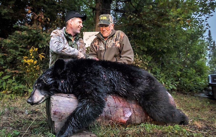Wisconsin Bear Hunt – Worth the Wait