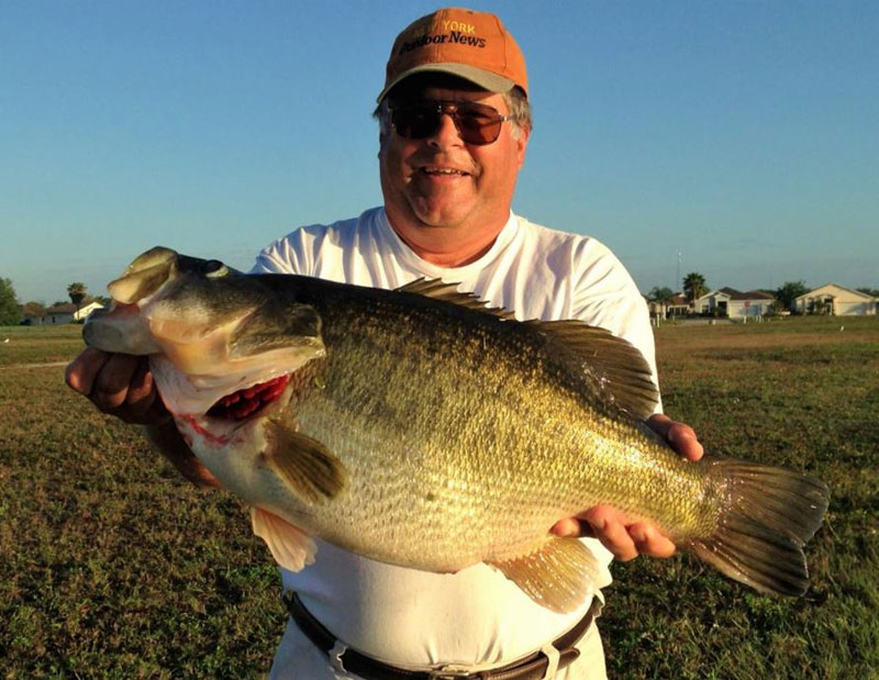 Giant Bass, Find 'Em Right Now!