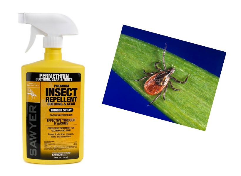 Protect your Pet - Homemade Flea and Tick Spray