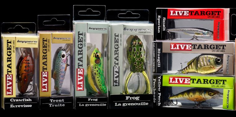 Lure Fishing Made Simple