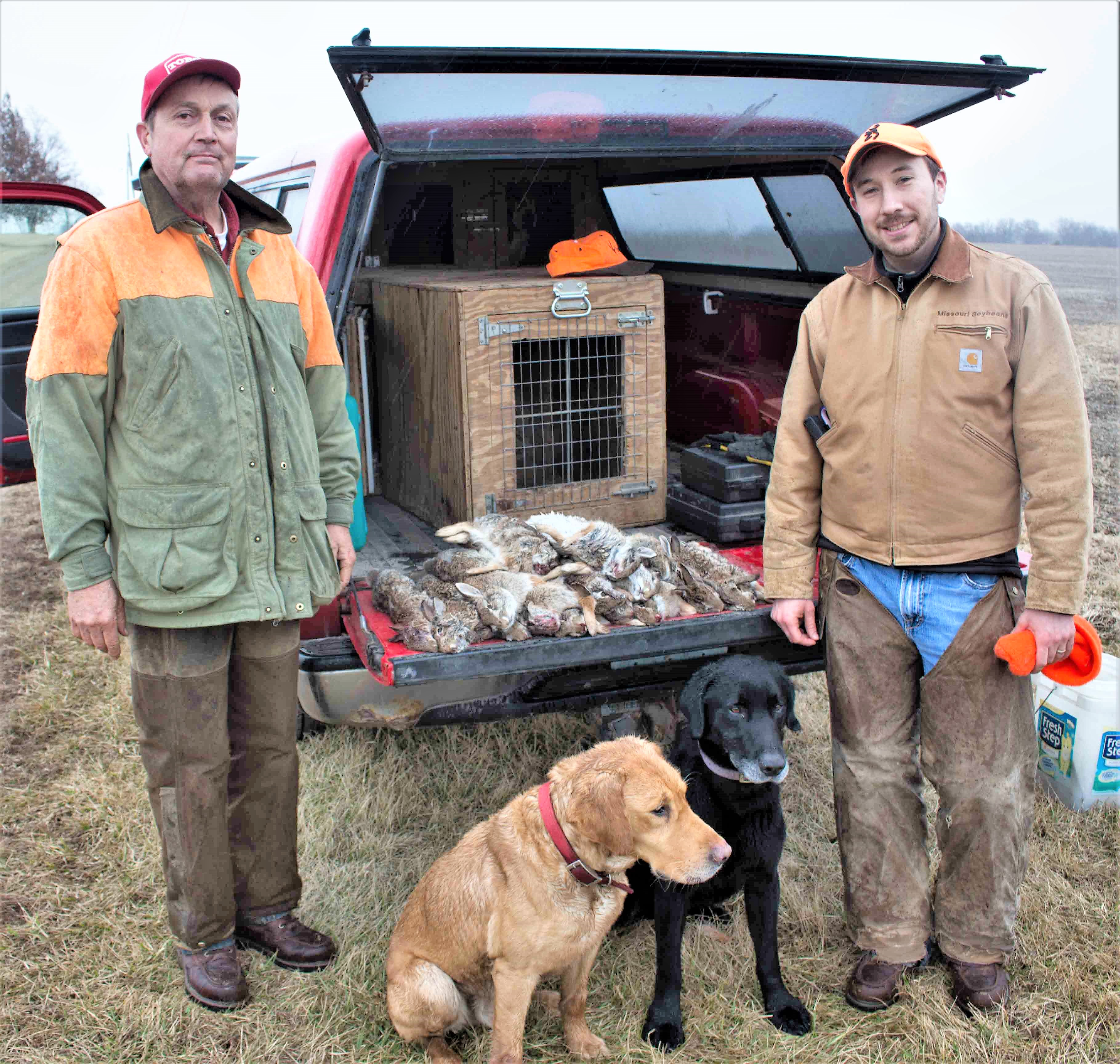 Dogs, Rabbits and Smith & Wesson