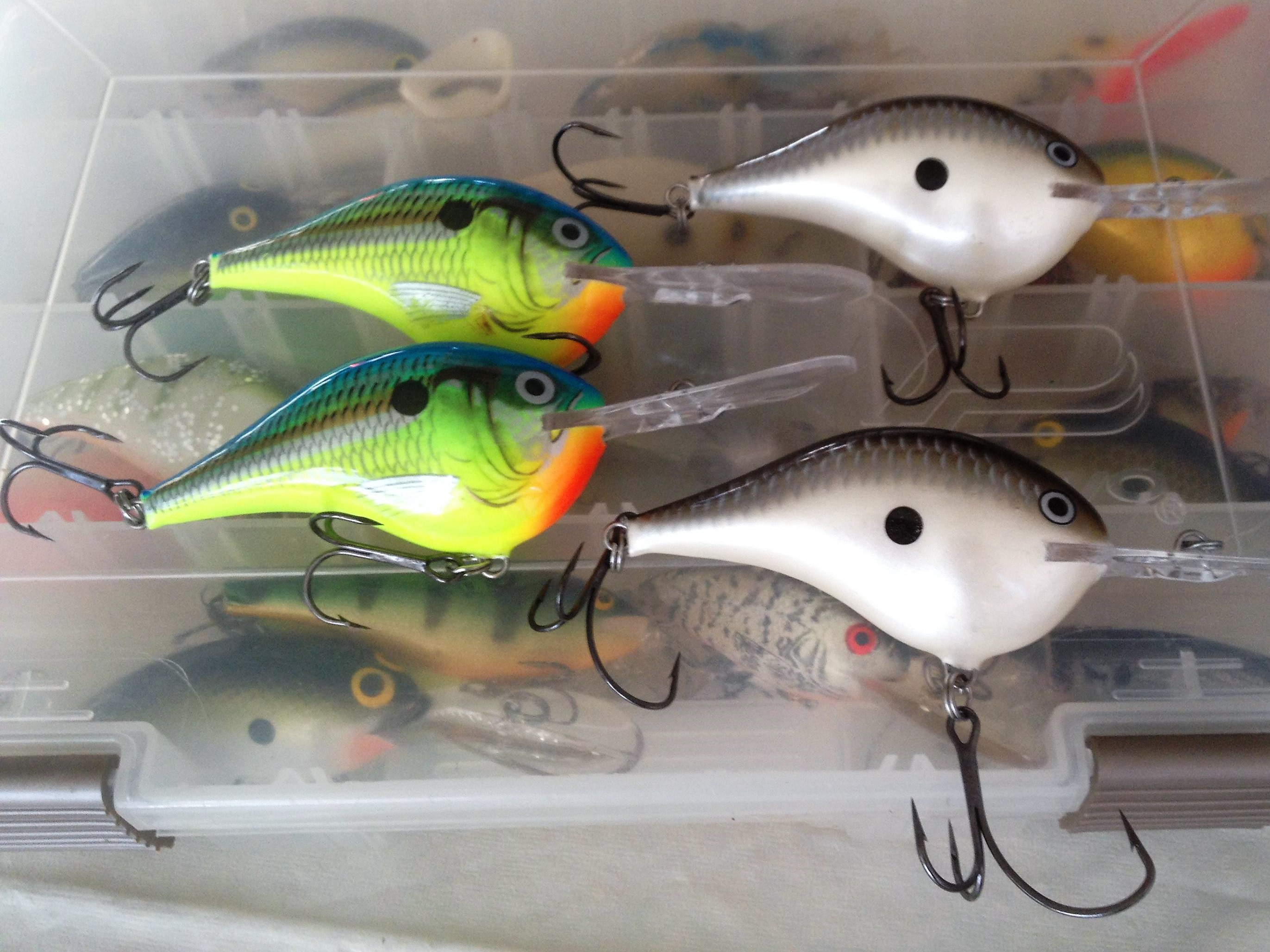 Rapala DT® (Dives-To) Series Crankbaits