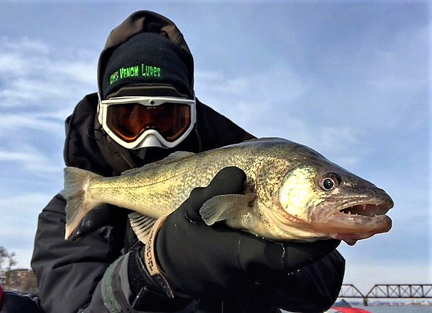 Lower Niagara River Winter Fishing, Rod-Bending FUN!